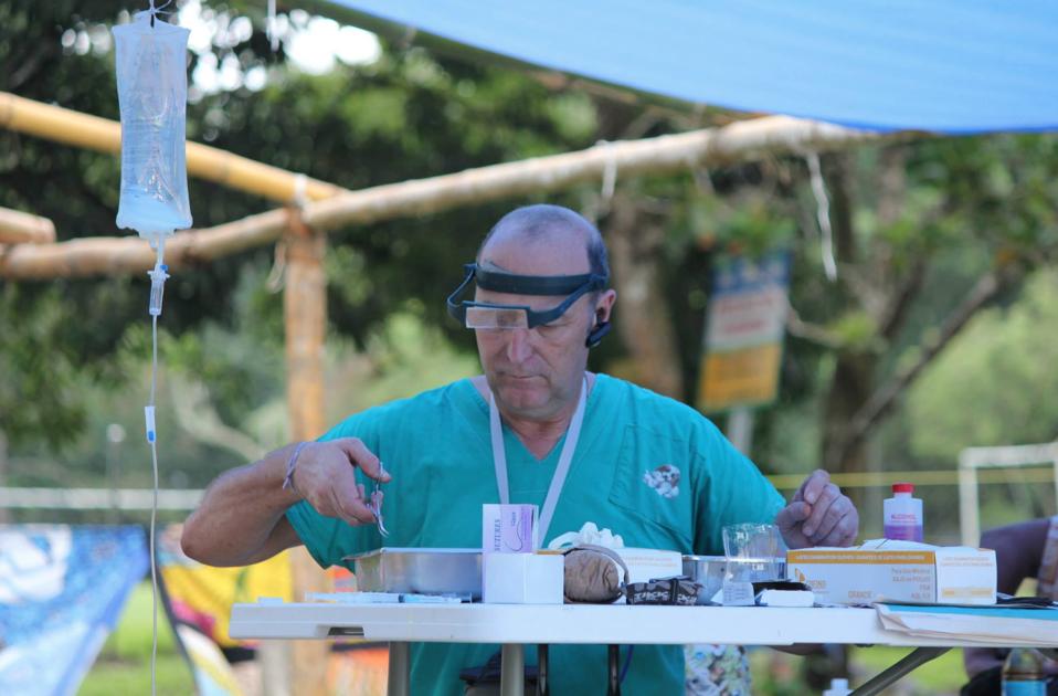 Dr-Eduardo-Bitter-McKee-Project-Veterinarian