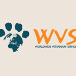 World Veterinary Service